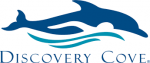 go to Discovery Cove